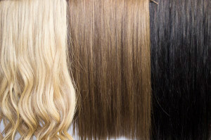 Russian Wefts - Gold Class